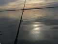 Perfect Fishing Conditions.jpg